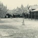 El antiguo mercado de ganado de la localidad. / reproducción de l. v.