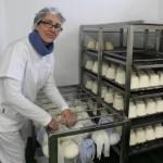 Isabel García, ayer, colocando unos quesos afuega´l pitu de trapu en su quesería moscona.